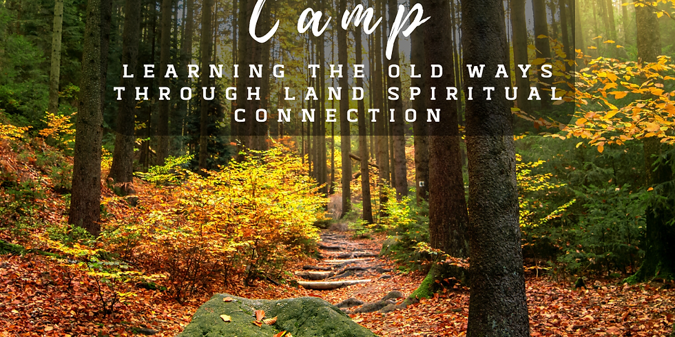 Shamanic Camp (Learning the old ways Through land spiritual connection)