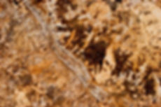 Victor Granite Golden Beach b