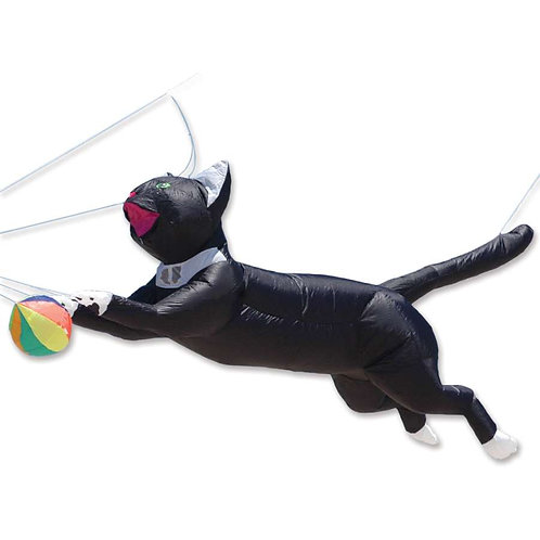 8 ft. RAM AIR CAT - BLACK