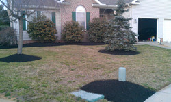 Spring Clean Out & Mulch