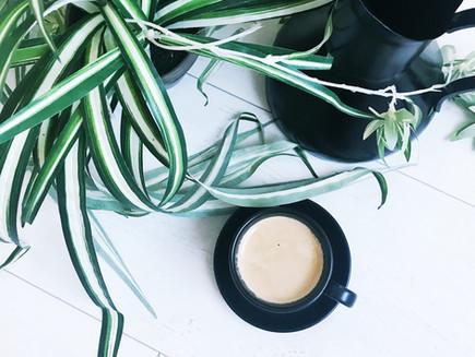 We zijn minder koffie gaan drinken, maar van betere kwaliteit
