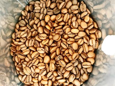 Arabica versus Robusta koffiebonen, wat is het verschil?