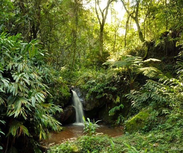 Cachoeira Syama Kunda