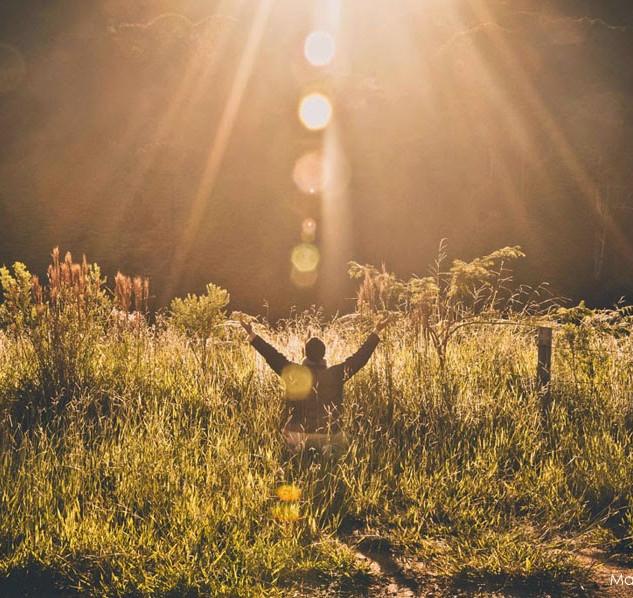Paz e Natureza