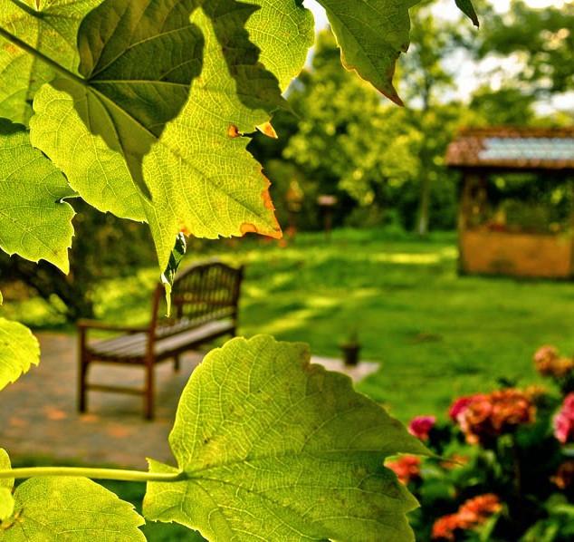 Jardim da Casa Lila