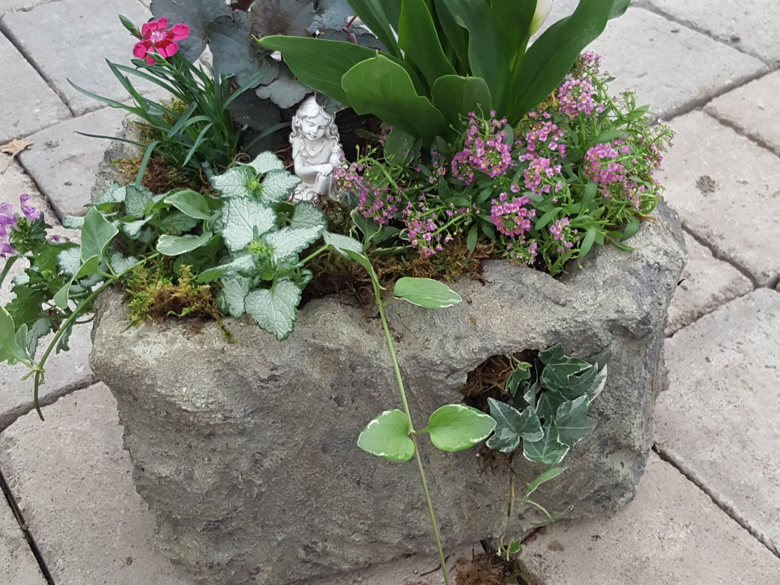 'Stone' Planter Workshop   BY APPOINTMENT ONLY   OR PICK-UP YOUR WORKSHOP BUNDLE TO DO AT HOME