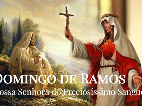 Mensagem de Jesus para o Domingo de Ramos: Misericórdia pelos inocentes.