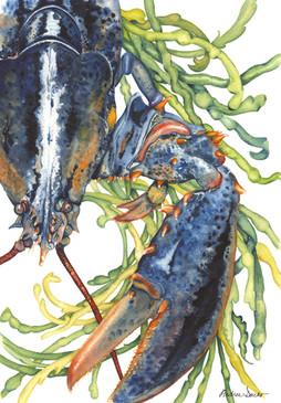 Andrea Dacko - Blue Lobster.jpeg