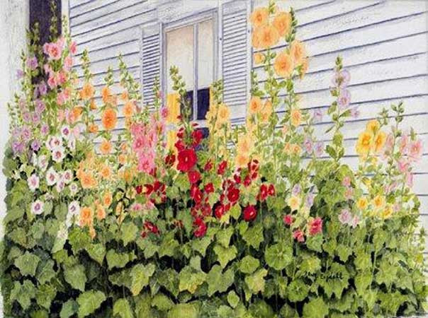 Nancy Engdahl - Hollyhocks Galore.jpg