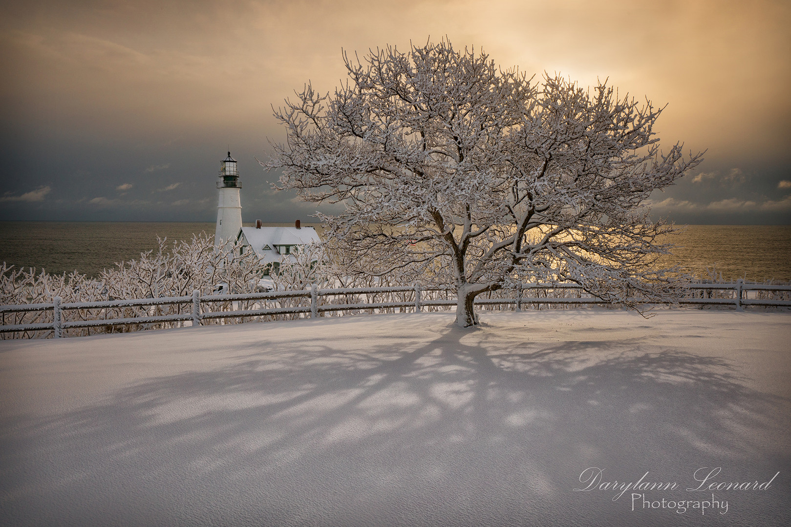Fresh Snow at Portland Lighthouse.jpg