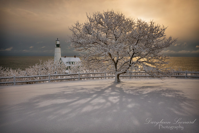 Fresh Snow at Portland Lighthouse.jpg