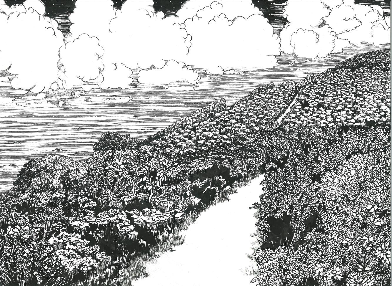 Coastal Landscape.jpg