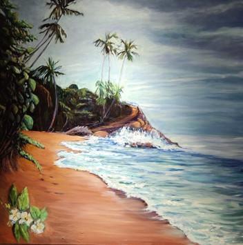 costarica-1017x1024.jpg