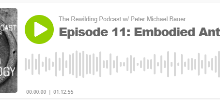 The Rewilding Podcast, Episode 11: Embodied Anthropology, with the participation of Josh Sterlin