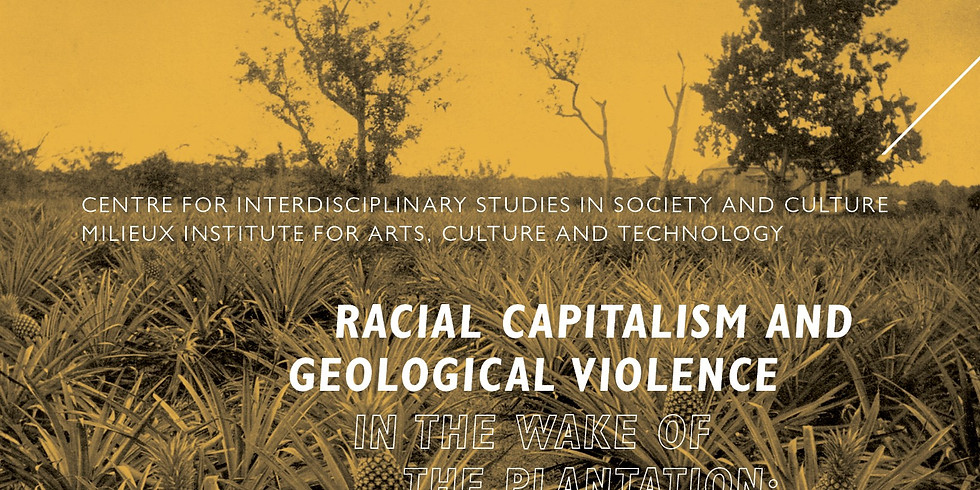 Racial capitalism and geological violence in the wake of the plantation