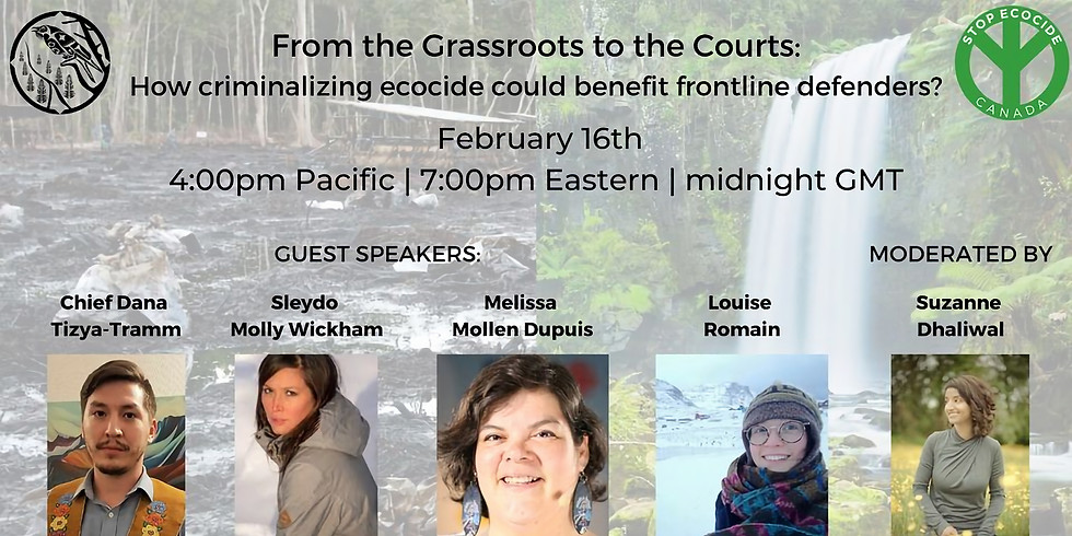 From the Grassroots to the Courts: how criminalizing ecocide could benefit land defenders