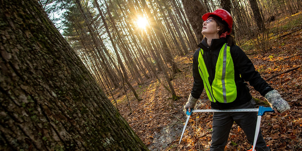 Building and Retaining Gender Diversity in University Forestry Programs: A Case Study of SWIFT at the University of Main