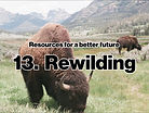 Resources_Rewilding-1024x768.jpg