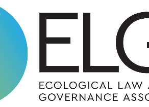 Introducing ELGA's Statement on an Ecologically Just Post-COVID Transition By Lisa Mead