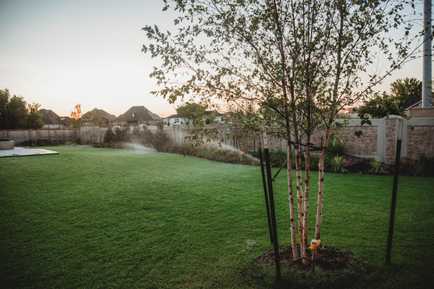 Irrigation & Drainage by Red Valley Landscape & Construction in Round Rock Texas