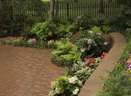 RAIN GARDENS – A SELF-SUSTAINING OASIS