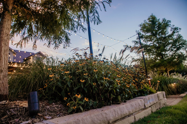 Commercial Landscape Lighting by Red Valley Landscape & Construction in ATX