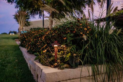 Commercial Landscape Lighting by Red Valley Landscape & Construction in Austin