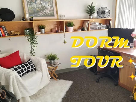 HOW TO: THE PERFECT DORM