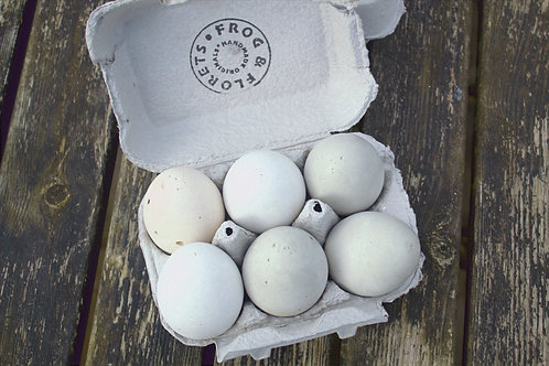 A Clutch of Eggs