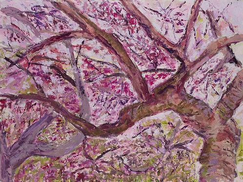 Brooklyn Botanical Gardens - Oil and Wax on Canvas