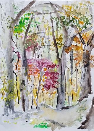 hammond_park_watercolor.jpg