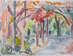 Brookline fall street