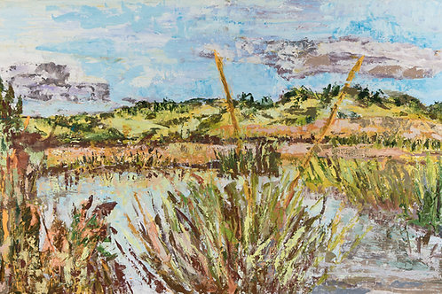Cape Cod Marshes