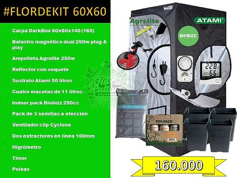 pack160 (1).jpg