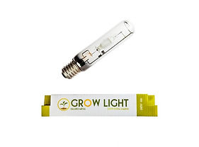ampolleta-250w-haluro-metal-grow-genetic