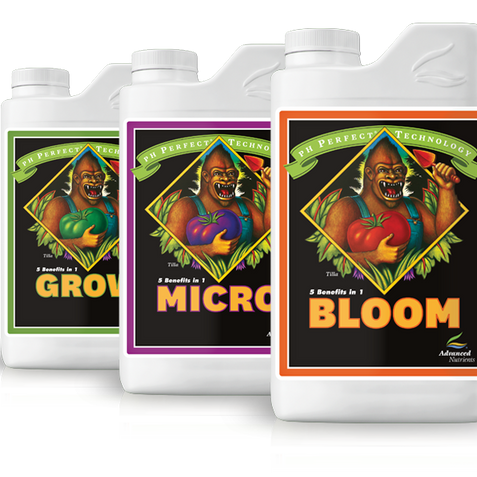 Grow-Micro-Bloom
