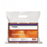 Cocos brix 6 uds