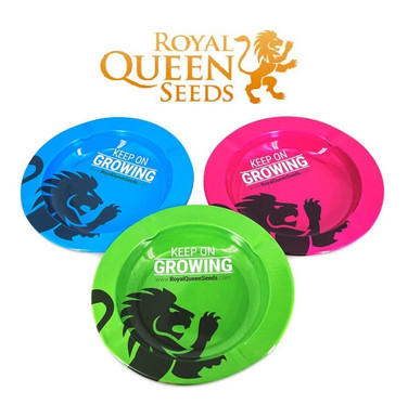 Cenicero Royal Queen Seeds