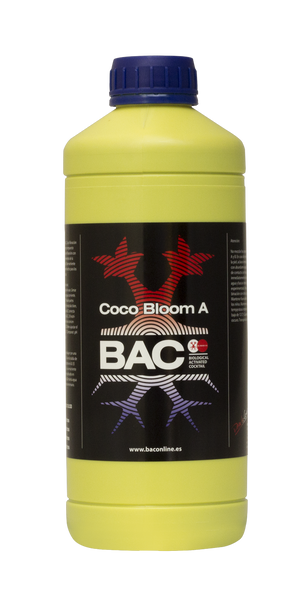 Coco Bloom A