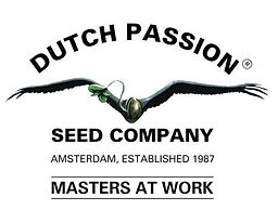 semillas dutch passion