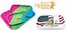 Bandeja Royal Queen Seeds