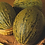 Thumbnail: IL PRIMO ORTO  NON  SI SCORDA MAI - Facili da coltivare buonissime da mangiare
