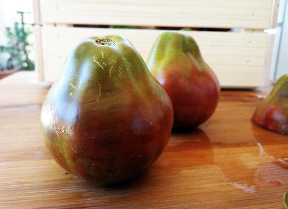 Pomodoro Trifele Nero Giapponese (L. Lycopersicum)