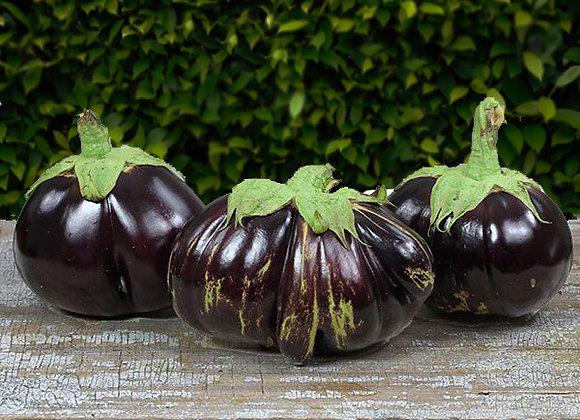 Melanzana Aswad (Solanum melongena)