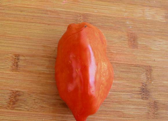 Pomodoro Jersey Devil (Lycopersicon lycopersicum)