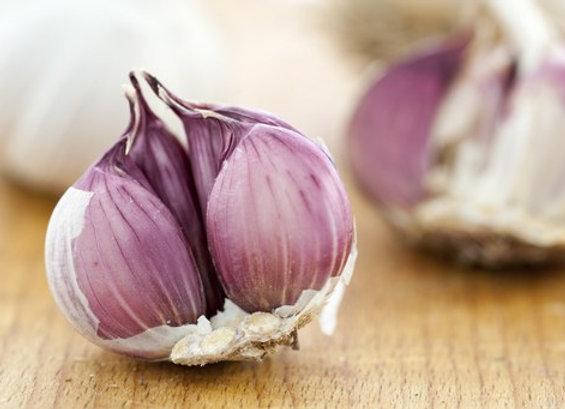 Aglio Rosso di Sulmona (Allium sativum)