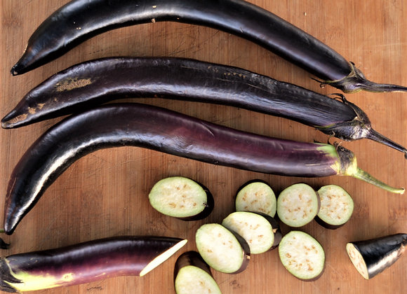 Melanzana Nagasaki Long (Solanum melongena)