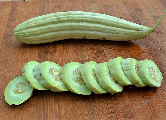 Tortarello abruzzese ( Cucumis melo)