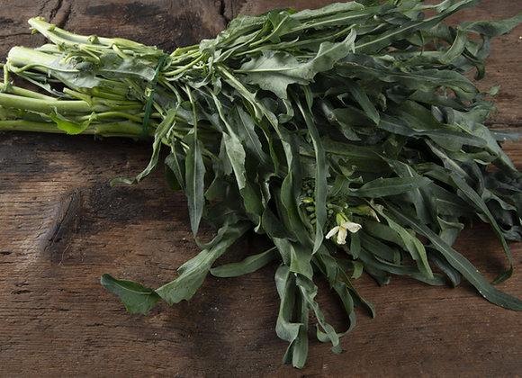 Cavolo Broccolo Spigarello (Brassica oleracea)