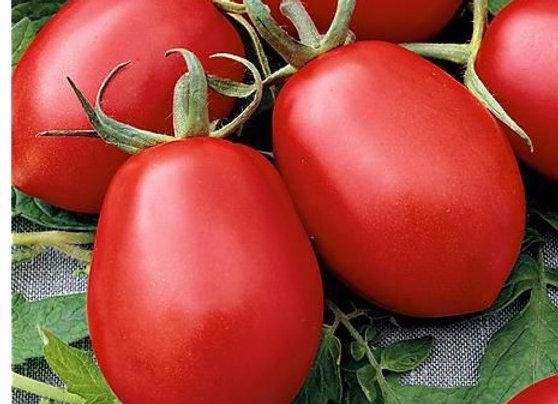 Pomodoro De Berao (L. Lycopersicum)